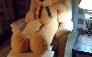 Купить большого плюшевого медведя (мишку) недорого, цена в Минске