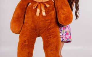 Купить плюшевого медведя с доставкой недорого в Минске