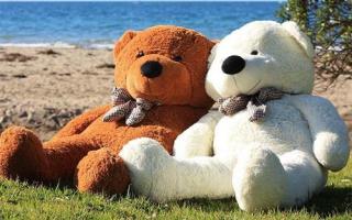 Купить плюшевого медведя в Витебске
