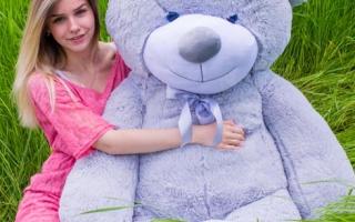 Большие плюшевые медведи в Гродно