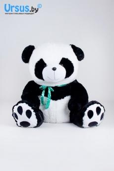 Панда с лентой