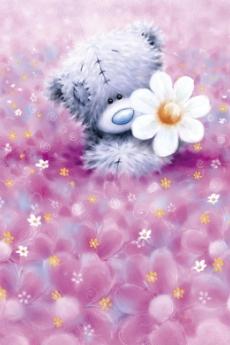 Тедди с цветочком